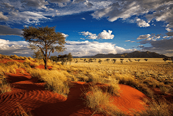 Blue sky in Namibia