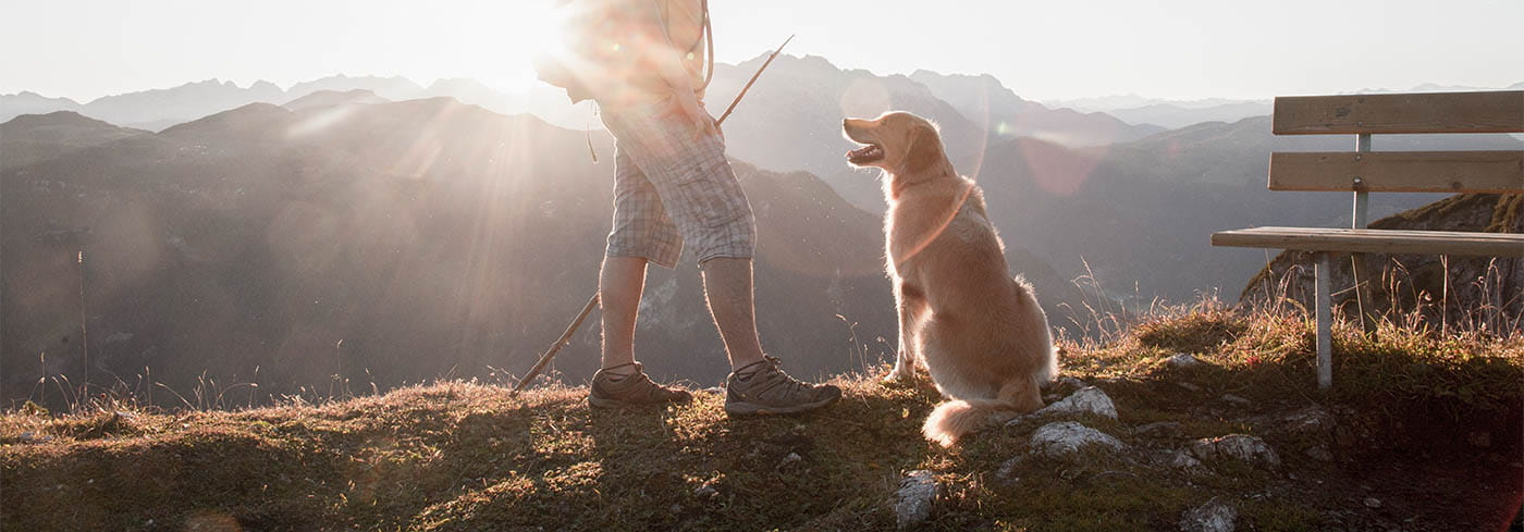 Hiker with dog at sunrise
