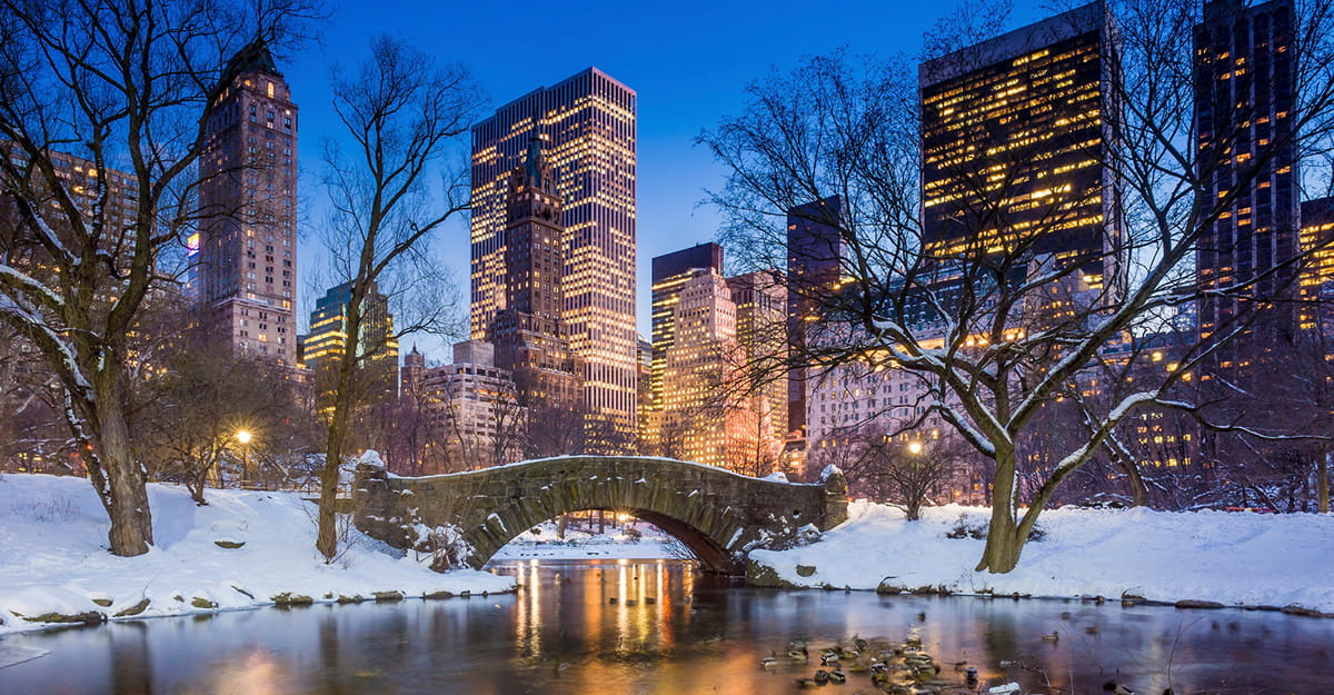 Snow in Central Park, New York