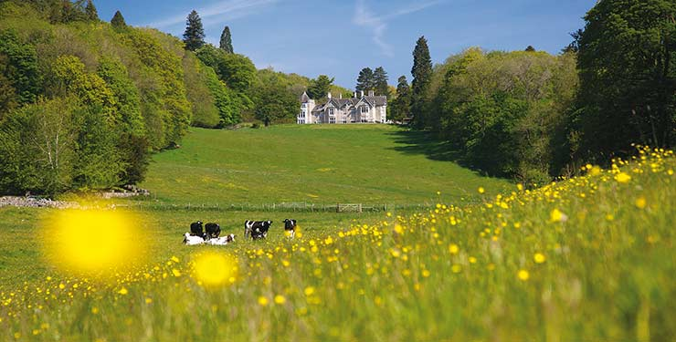 Merlewood Mansion and grounds, Cumbria