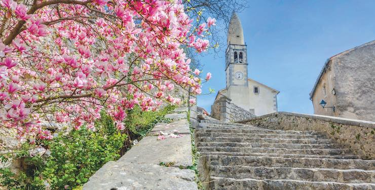 Blossoming tree and old stone steps leading up to Church of St. Daniel, Stanjel, Slovenia