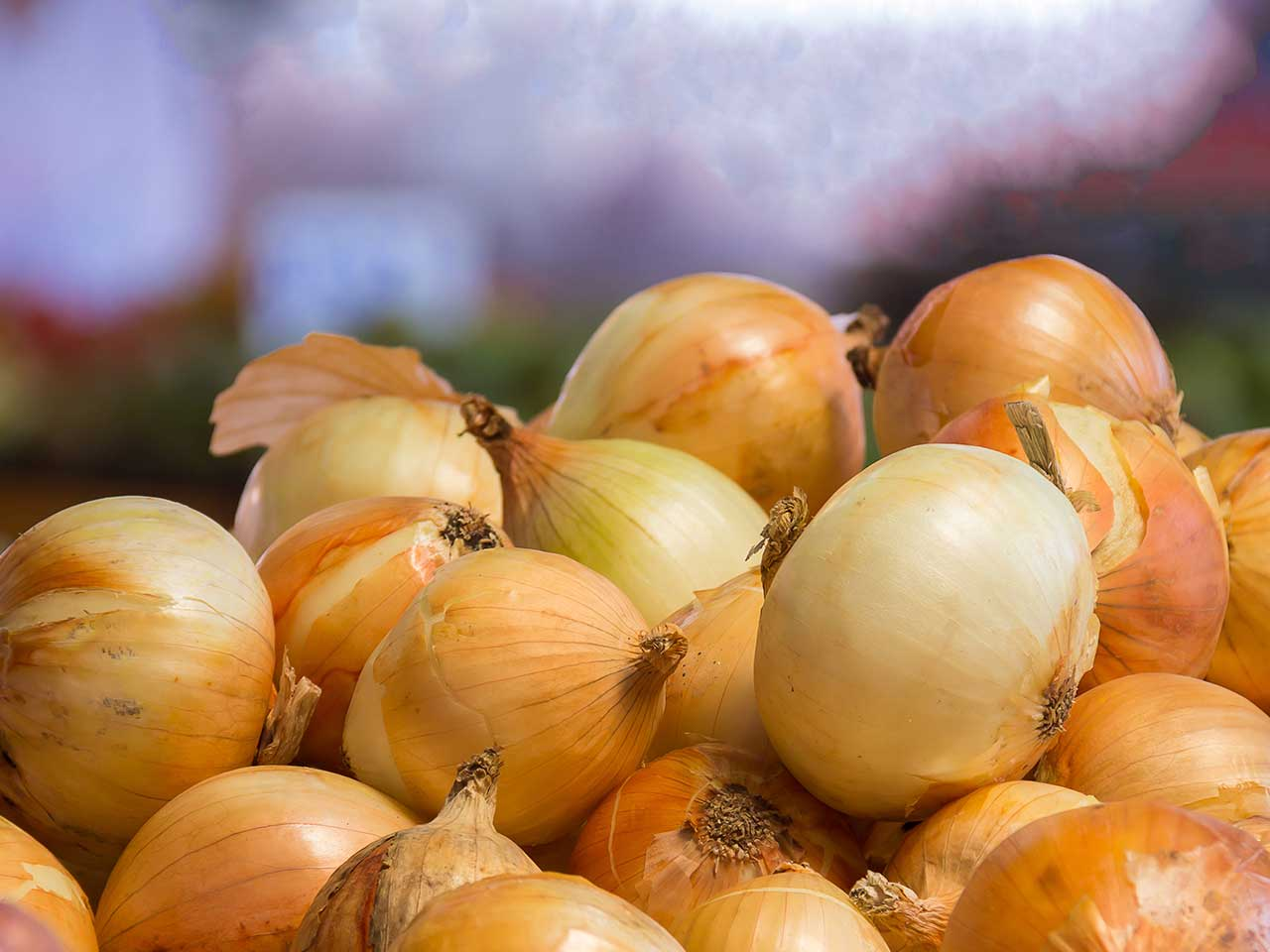 Onions on a market stall