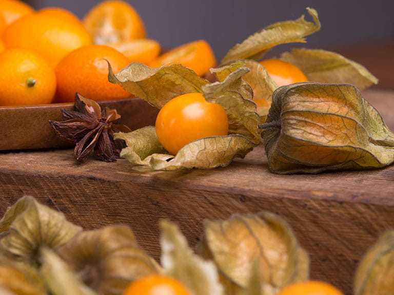 Exotic fruits physalis and kumquats