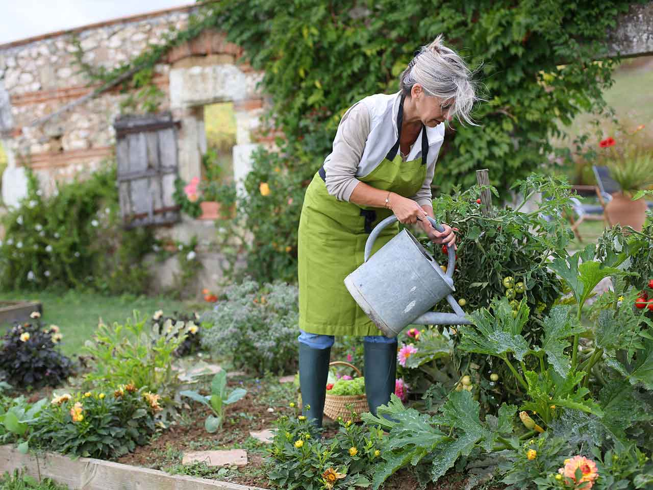 Mature lady watering the garden