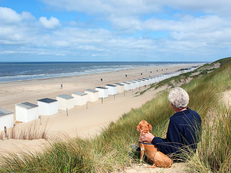 Senior man sitting with dog on the beach
