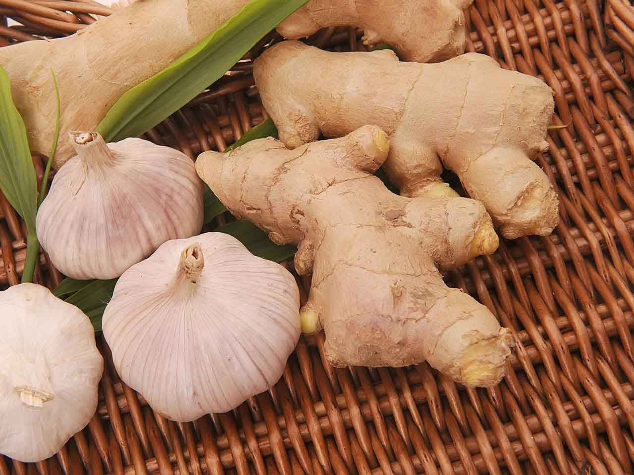 Close up of garlic bulbs and ginger