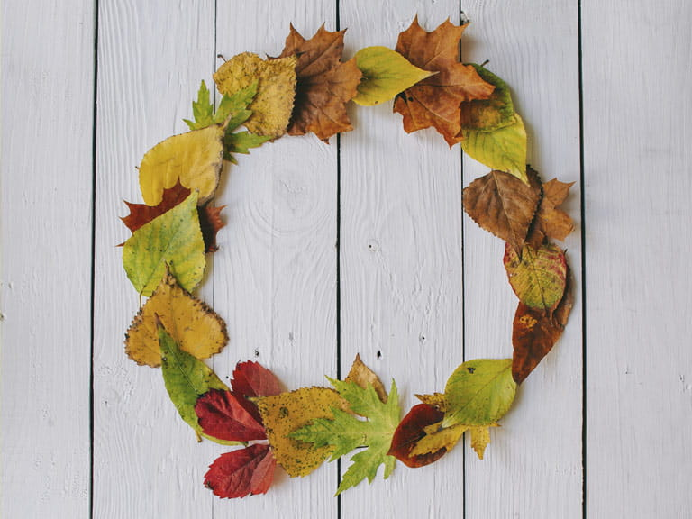 Leaf wreath /></p> <h2>Make an autumn wreath</h2> <p>A ring of glorious colour looks gorgeous hung on the door. Add flowers, seedheads, berries, acorns and other autumnal goodies for colour and texture.</p> <p>There are several ways to make a leaf wreath, depending on the children's age, and the supplies you have at home.</p> <p>If you have a woven willow or wicker wreath base, or a florist's foam ring, the kids can push leaf stalks directly into it, then you can hang it on the door or window.</p> <p>Long strands of ivy can be wound into a circle, secured with wire or sticky tape, then the kids can tuck the leaves in.</p> <p>Simplest of all, cut a ring shape from cardboard, then kids can glue leaves to it. For the best effect, leaves should overlap each other and the edges of the ring.</p> <p><img src=