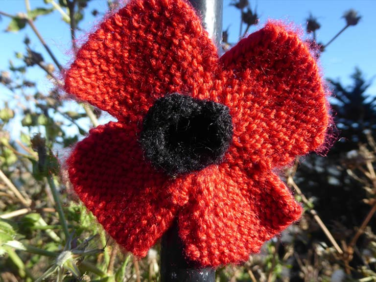 Knitting Pattern Red Poppy : Knit or crochet a poppy in memory of the fallen - Saga