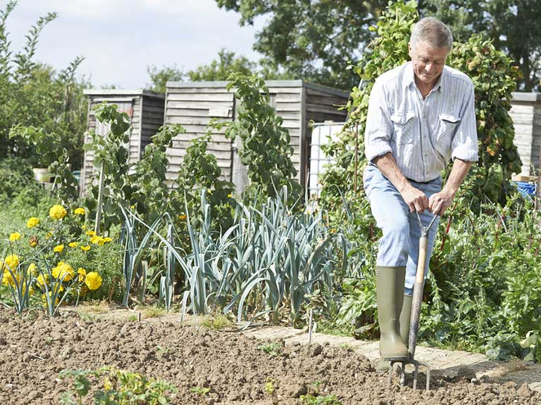 Senior man digging an allotment