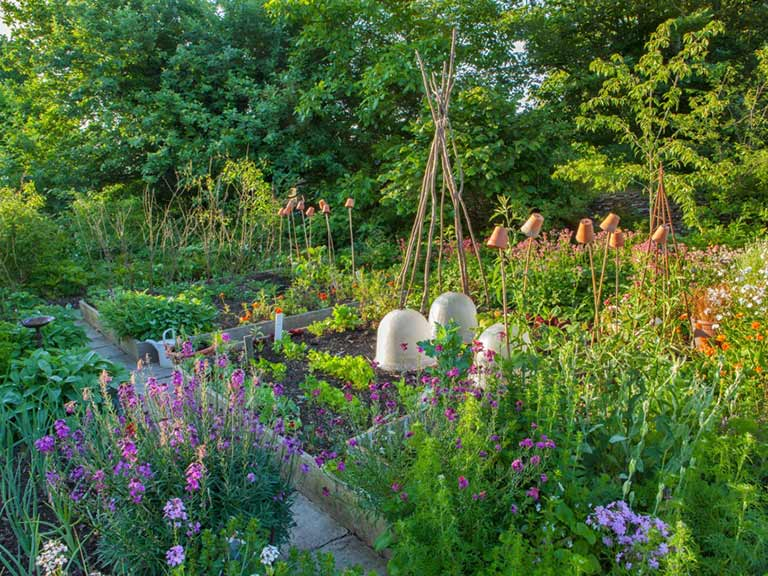 Flower and vegetable quadrants in Val Bourne's garden