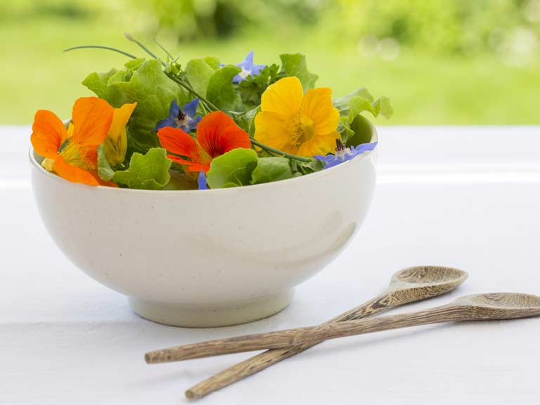 Nasturtium and borage salad