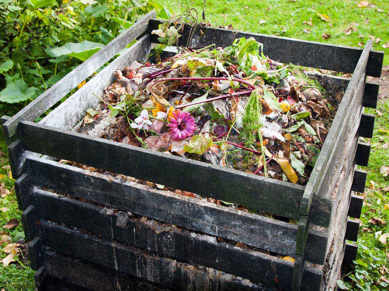 How to make a compost heap - Saga