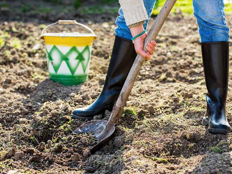 How To Prepare Your Soil For Spring Planting Saga