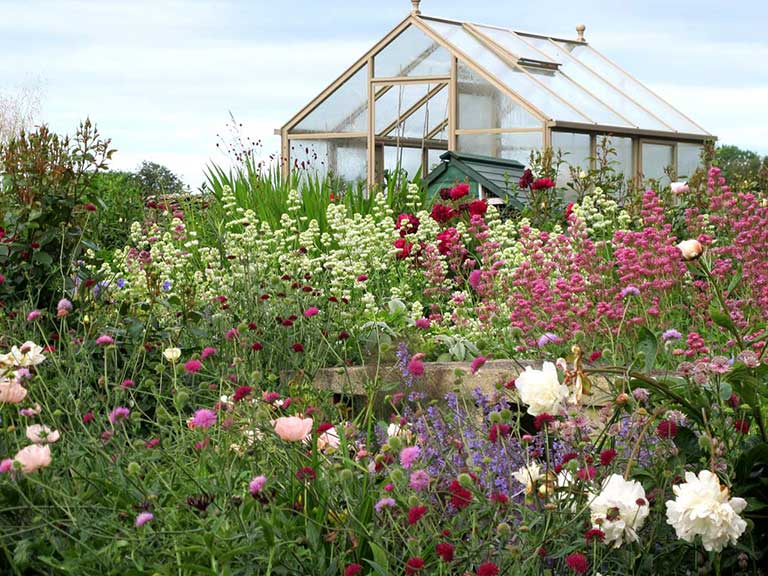 Val Bourne's greenhouse