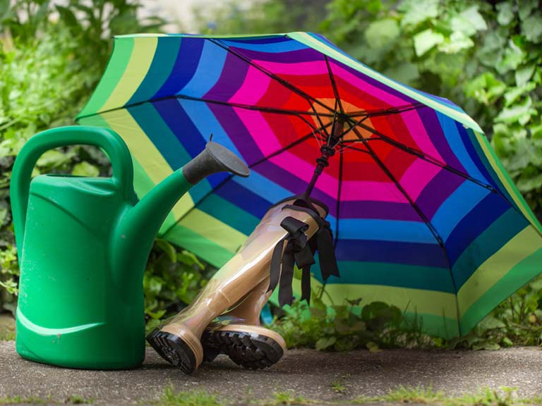 Watering can, umbrella and Wellington boots in a wet garden