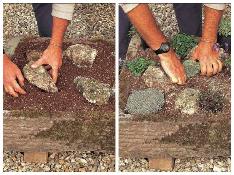 Planting an Alpine trough