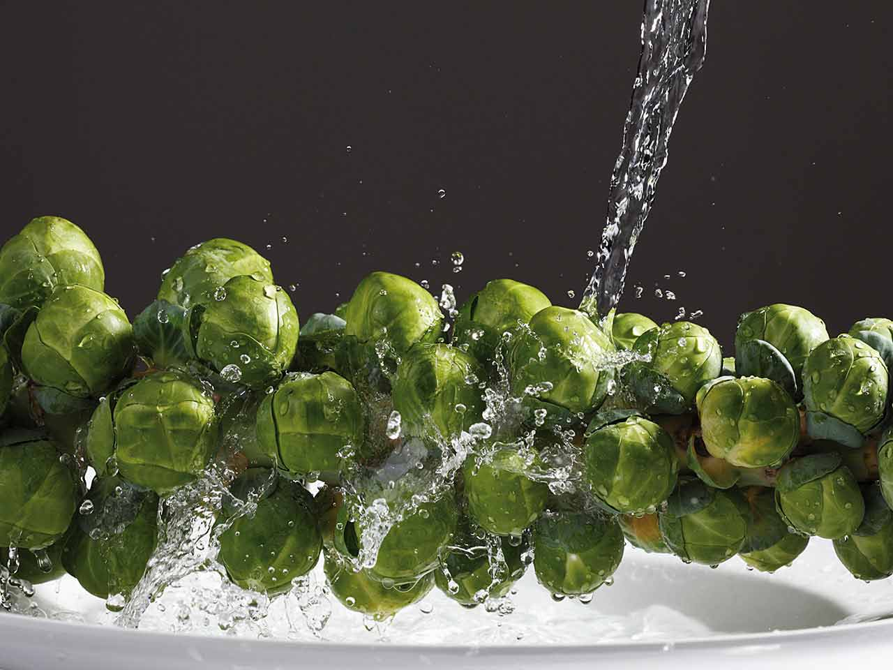 Brussel sprout stalk being rinsed
