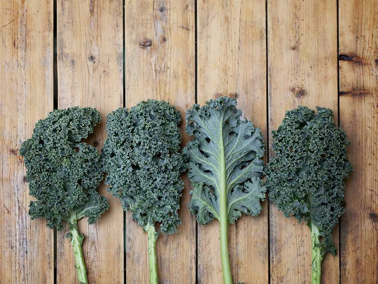Pieces of Kale on a wooden board