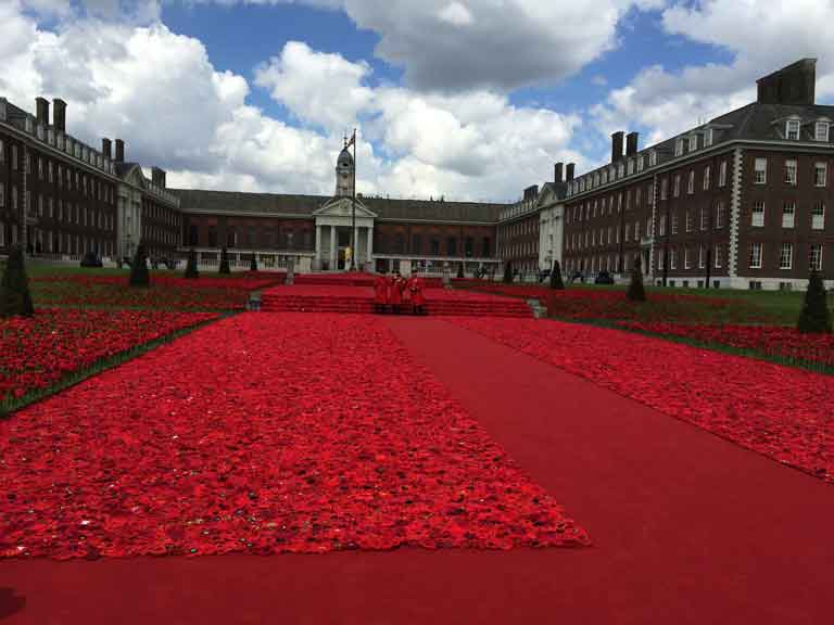 chelsea flower show, carpet of red poppies