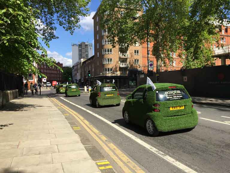 chelsea flower show, fuzzy green cars