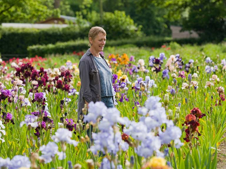 Chelsea Flower Show 2015 What Not To Miss Saga