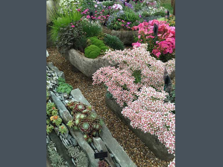 Rotherview Nursery rock gardens