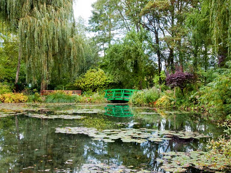 The Japanese Bridge in Monet's garden