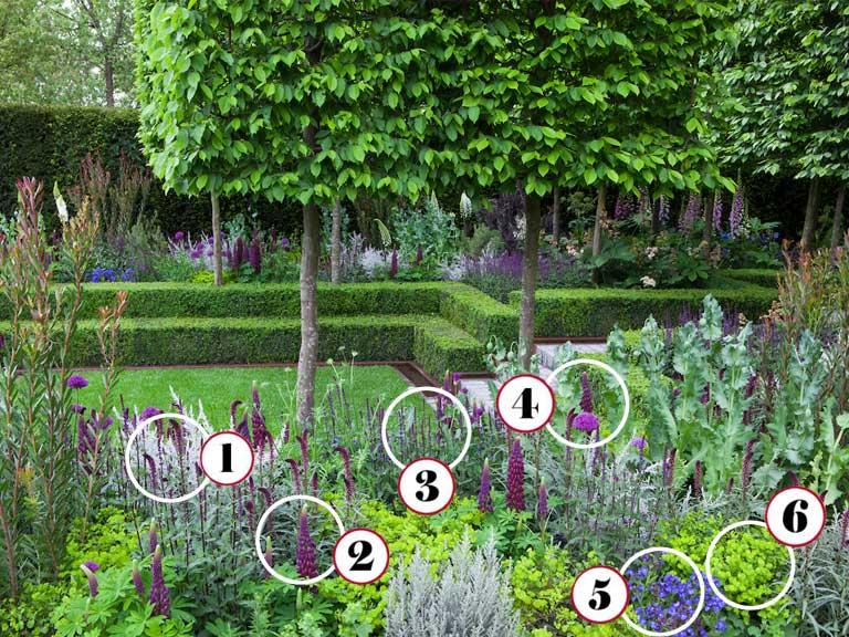 Anatomy of a Chelsea garden: Husqvarna Garden - Saga
