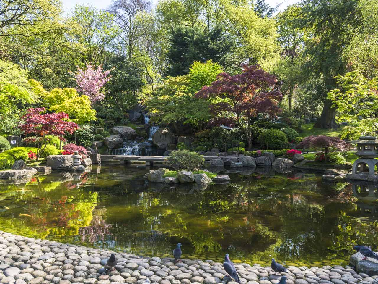 How To Create A Japanese Garden