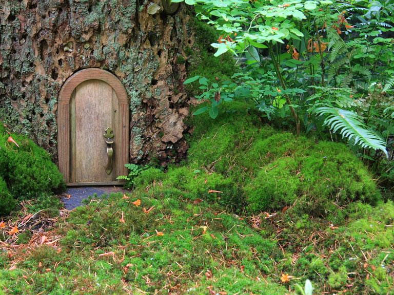 Attach small doors to the base of tree trunks to create little fairy houses.