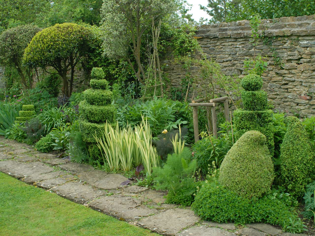 12 beautiful examples of creative cloud pruning saga for Garden design amazon