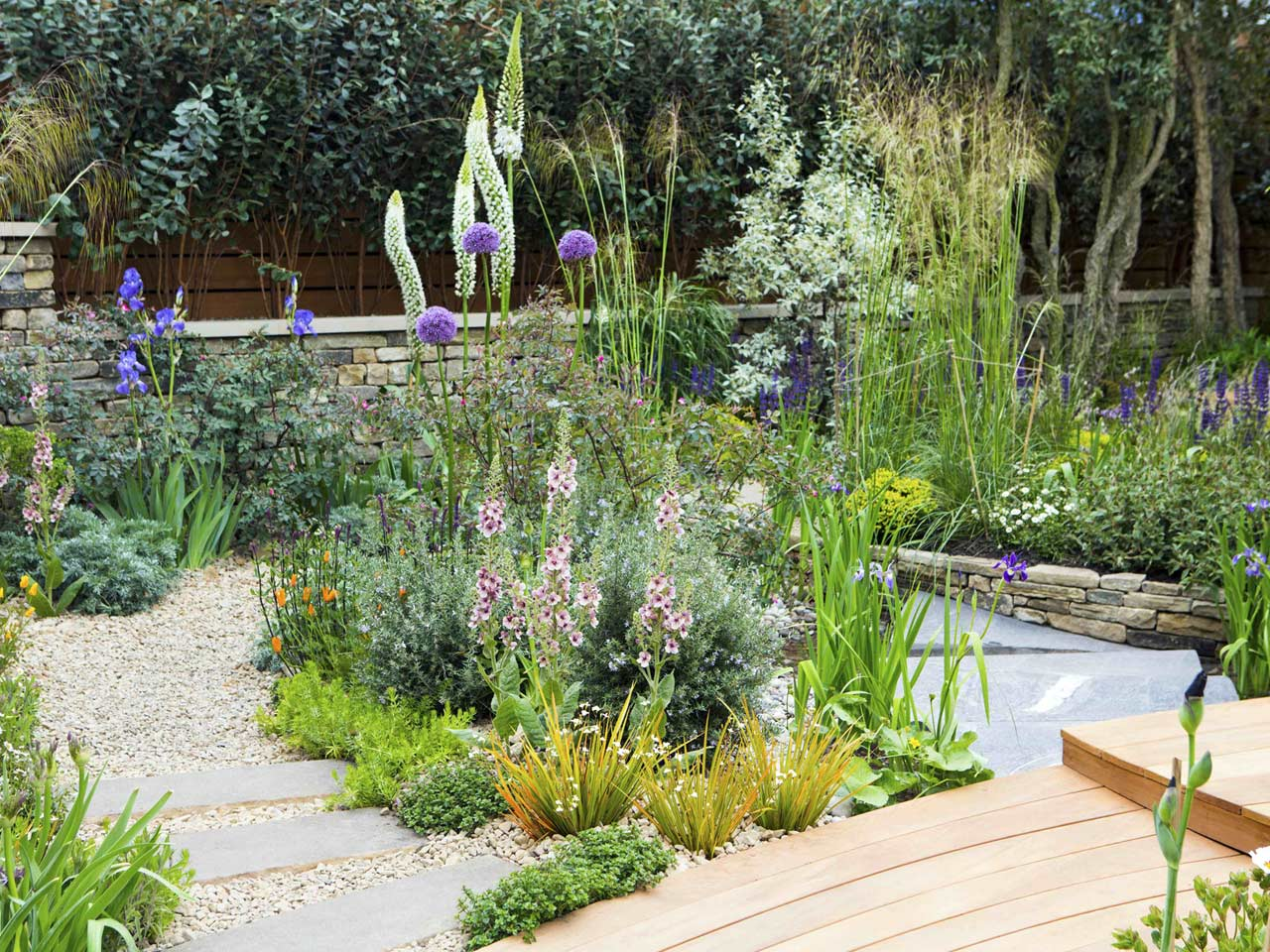 Expert tips for designing and planting a border saga for Garden border planting ideas
