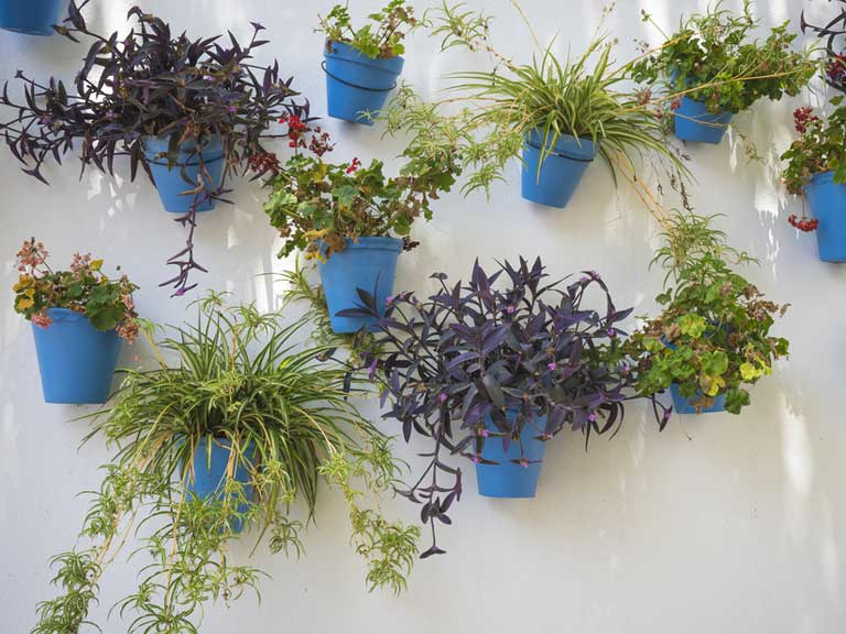 Individual Colourful Pots Can Liven Up A Plain Wall. Balcony Planters