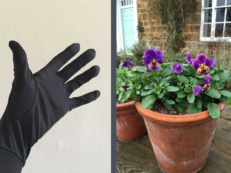 Glove and violas