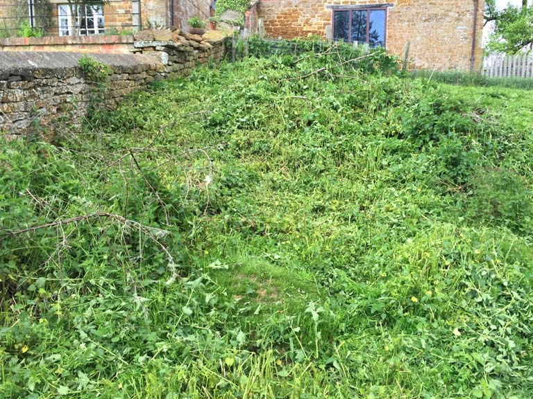 Landscape Gardening Per Hour : Half an hour later there is no risk of the nettles setting seed