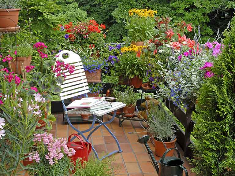 Gardening ideas for balconies patios courtyards saga for Small garden plans uk