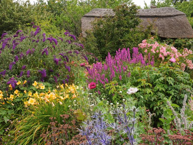 Cottage garden design plants structure proximity Saga