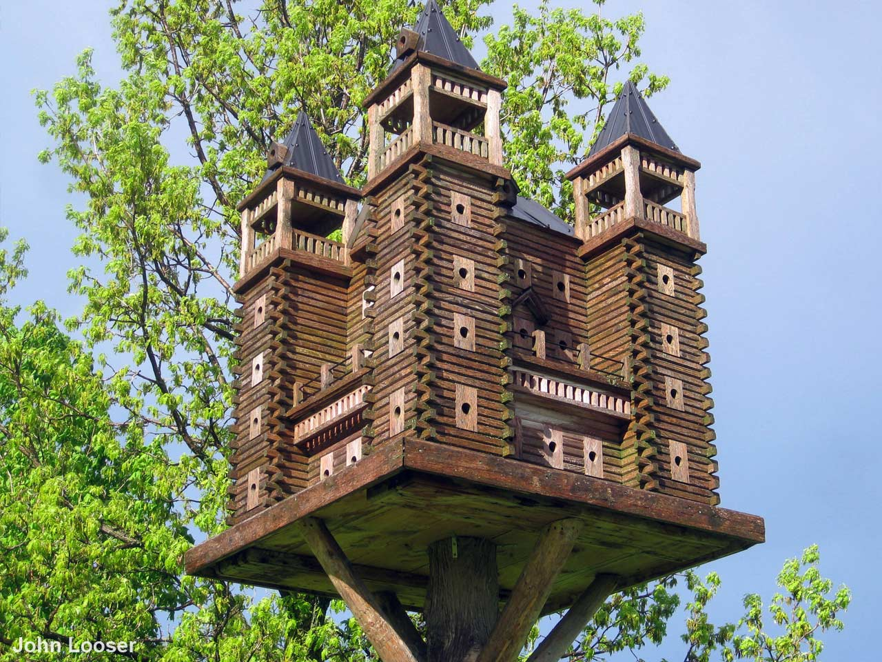 12 Incredible And Inspiring Birdhouse Ideas Saga