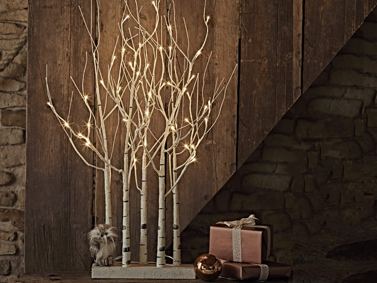 Cox & Cox indoor/outdoor silver birch