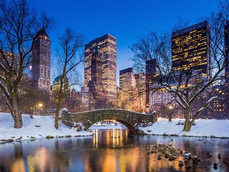 Αποτέλεσμα εικόνας για central park christmas
