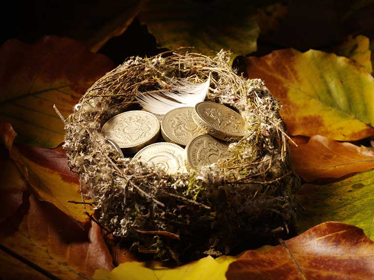 Pound coins in a nest to represent how the Autumn Statement will affect nest eggs and savings