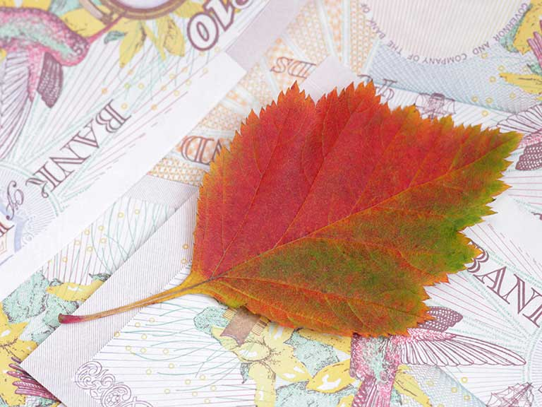 The Autumn Statement