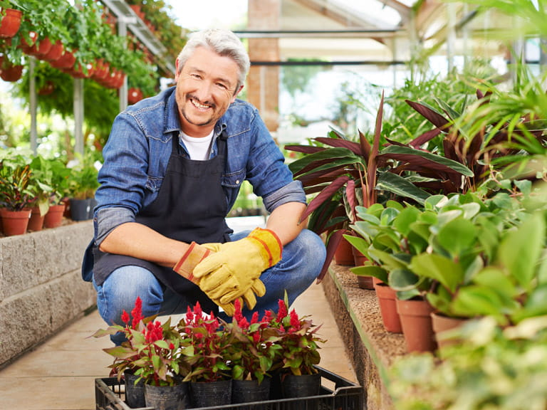 Man working in a garden centre after reaching state pension age