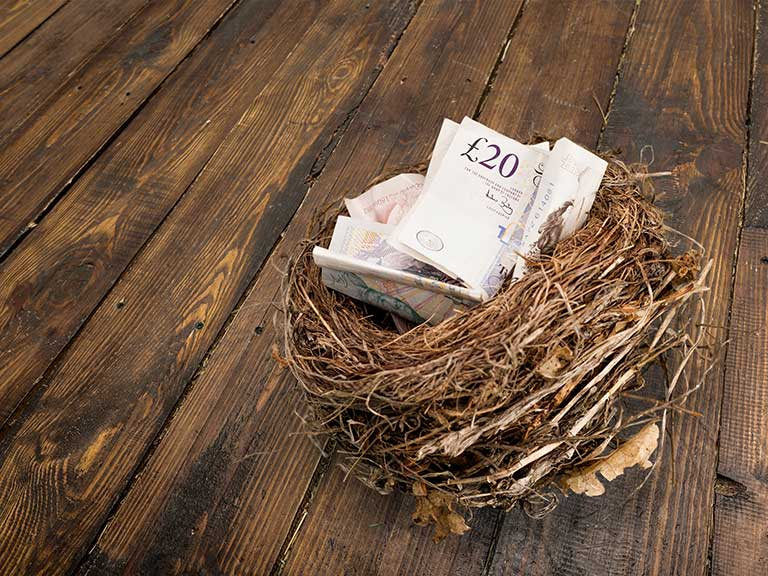 Birds nest holding pension cash
