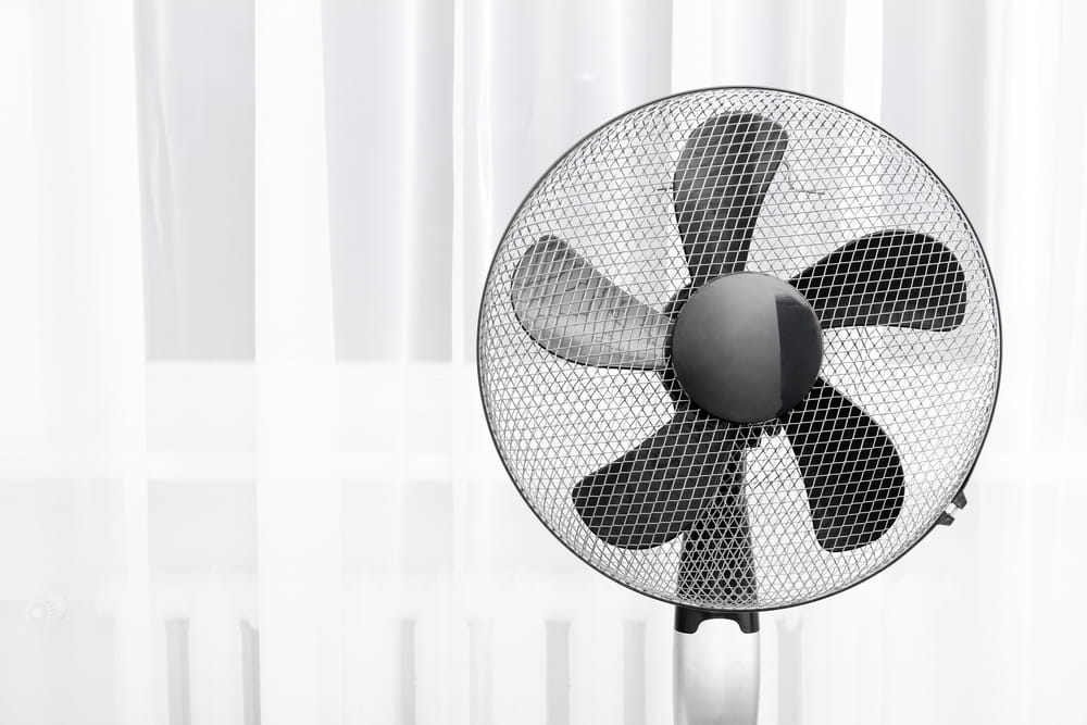 Electric fan by a window