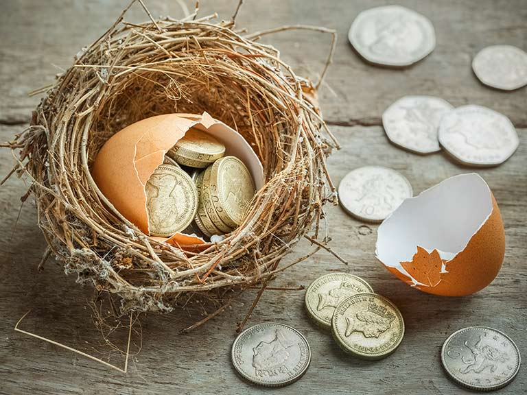Egg containing coins in nest