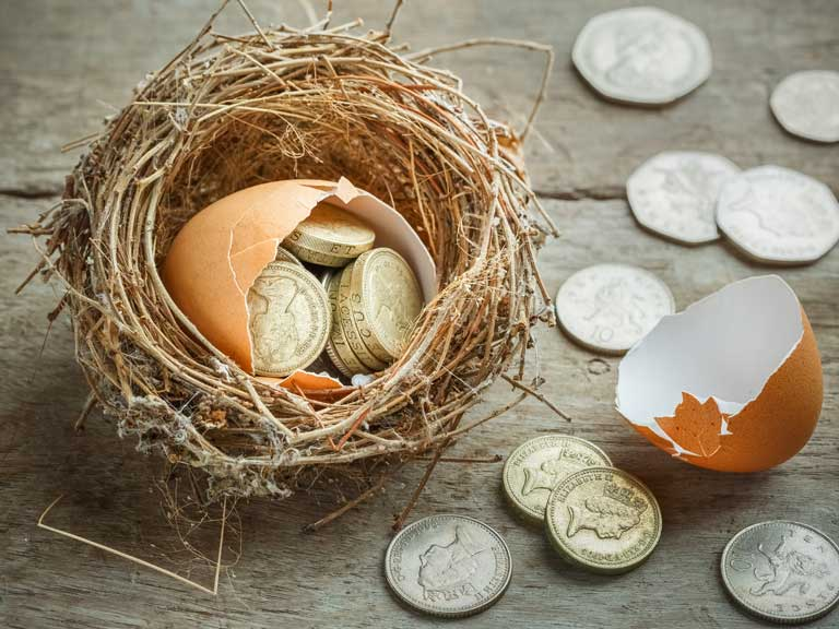 Money in a nest to represent a small lump sum