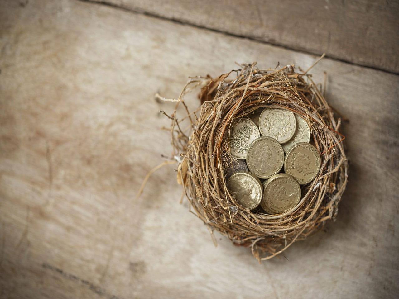 Nest egg with money in it to represent the question: is a buy to let mortgage a good investment?