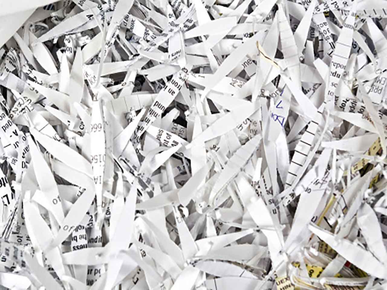 Shredded bank statements and personal documents