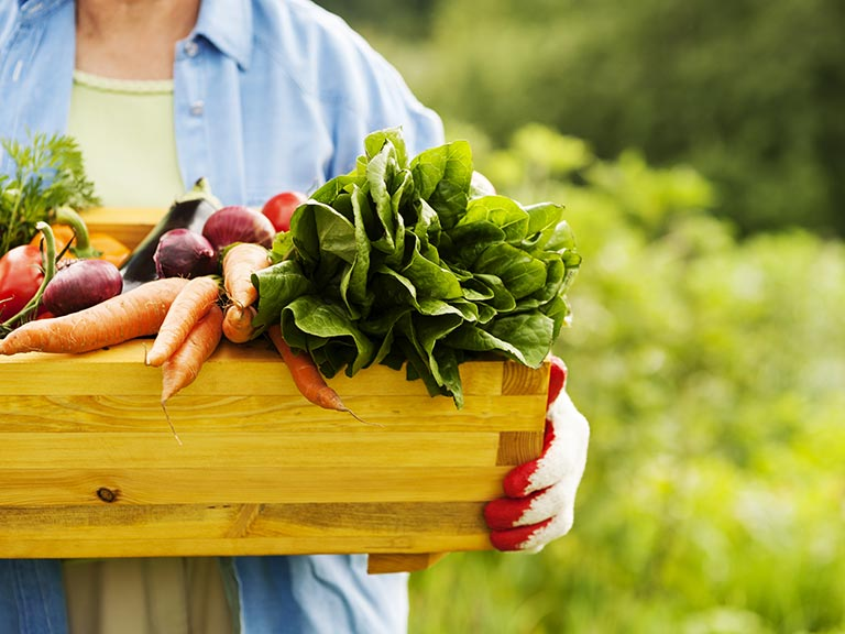 Senior woman holding vegetable box